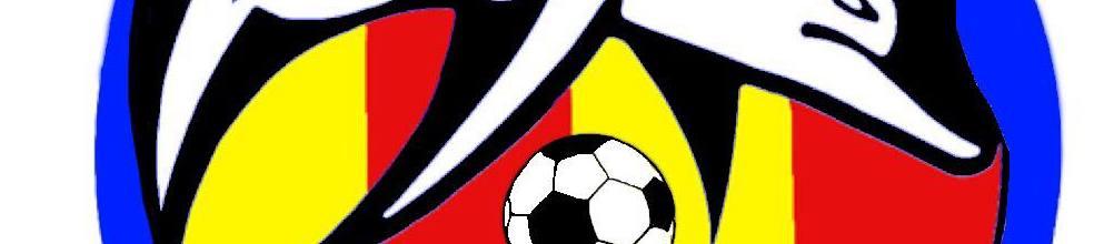 FC ENSUES LA REDONNE 89 : site officiel du club de foot de Ensues la redonne - footeo