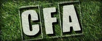 US LE PONTET FOOTBALL : site officiel du club de foot de LE PONTET - footeo