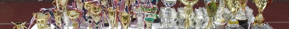 U13 Roissy en Brie : site officiel du tournoi de foot de ROISSY EN BRIE - footeo